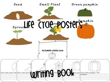 Pumpkin Life Cycle and More!