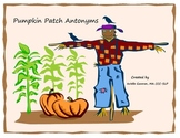 Pumpkin Patch Antonyms