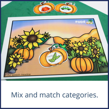 Pumpkin Patch Categorization