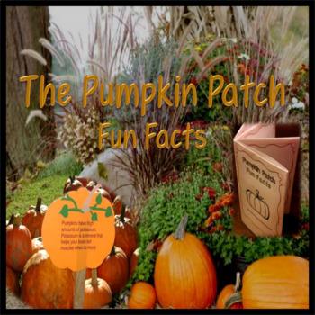 Pumpkin Patch Fun Facts ~ Foldable