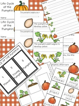 Pumpkin Patch Fun - Science, Math, and ELA