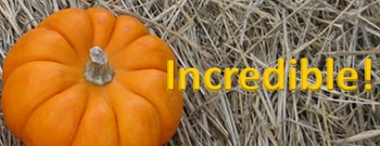 Photo Products - Pumpkin Patch Theme