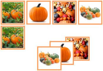 Pumpkin Photo Matching Cards
