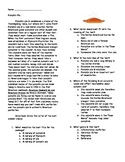 Pumpkin Pie comprehension