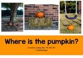 Pumpkin Prepositions Interactive Book: Where is the Pumpkin?