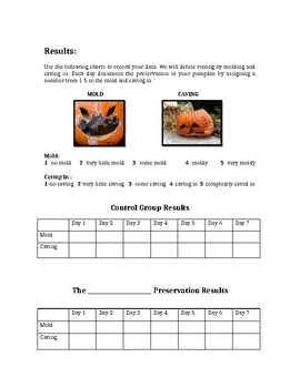 Pumpkin Preservation Experiment!