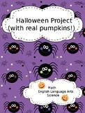 Pumpkin Project - Activities for using a real pumpkin