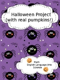 Pumpkin Project - Activities for using a real pumpkin