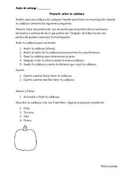 Pumpkin Project / Proyecto de Calabaza