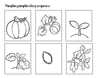 Pumpkin, Pumpkin Emergent Reader