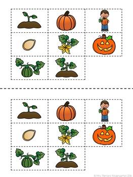 Pumpkin Pumpkin FREEBIE: Read & Respond