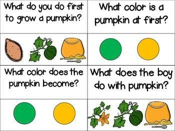 Pumpkin, Pumpkin Storyboard and Comprehension Clips Freebie