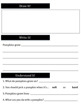 Pumpkin Reading Passage and Comprehension