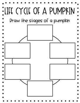 Pumpkin Research Science Booklet Bundle