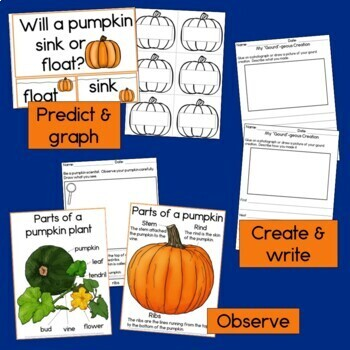 Pumpkin STEAM investigations