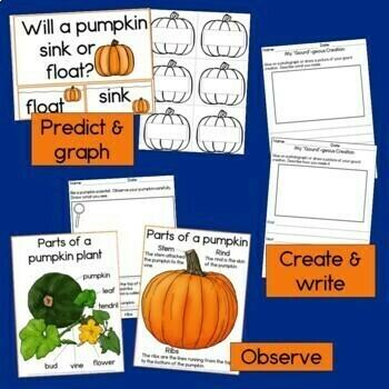 Pumpkin STEM / STEAM activities