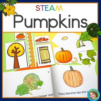 Pumpkin STEAM investigations