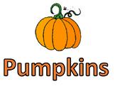 Pumpkin Schema Anchor Chart Headings