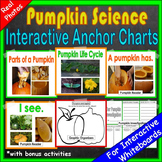 Pumpkin Science Unit | Pumpkin Activities | Pumpkin Life Cycle