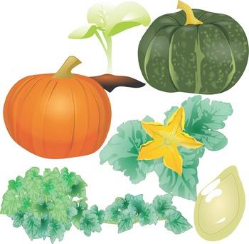 Pumpkin Science Clip Art