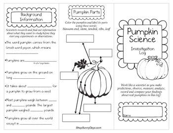 Pumpkin Science Investigation