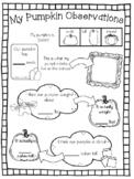 Pumpkin Science & Math Recording Sheet