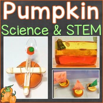 Pumpkin Science & STEM, Parts of a Pumpkin Word Wall Cards, Pumpkin Craft