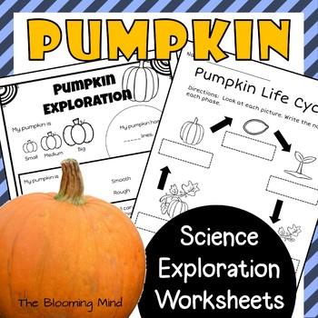 Pumpkin Science Worksheets {No Prep}
