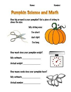 Pumpkin Science and Math!