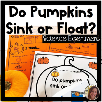 Pumpkin Science for Special Education   Do Pumpkins Sink or Float?
