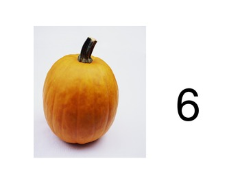 Pumpkin Seed Common Core Counting Activity