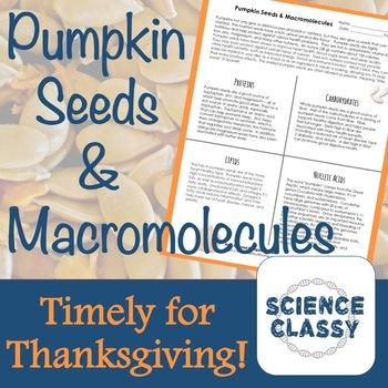 Pumpkin Seeds Macromolecules Review