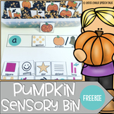 Pumpkin Sensory Bin for S Blends and Describing
