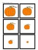 Pumpkin Size Sequencing Activity