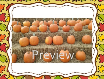 Pumpkin Stock Photos for Educational Resources