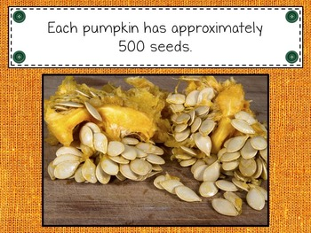 Pumpkin Time {Nonfiction & Literacy Unit}