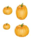 Pumpkin Unifex cube measuring
