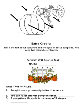 Pumpkin Unit Science Study Guide and Test