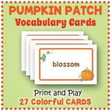 Pumpkin Vocabulary Cards