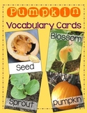 Pumpkin Vocabulary Cards | Pumpkin Life Cycle Vocabulary | Fall Science