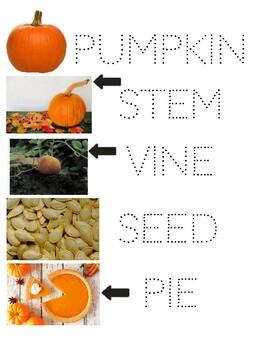 Pumpkin Vocabulary Follow the Dots