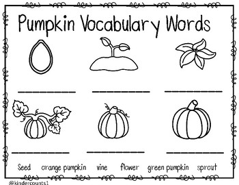 Pumpkin Vocabulary Labeling
