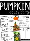 Pumpkin Vocabulary Resources