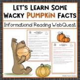 Pumpkin Webquest Reading Activity - Wacky Pumpkin Facts Research Worksheet