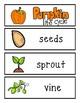 Pumpkin Word Wall Cards