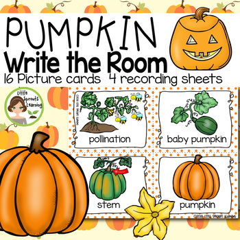 Pumpkin (Life Cycle) Write the Room - 16 cards four versions, 4 recording sheets