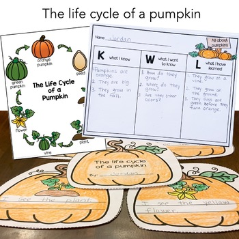 Pumpkin Writing Activities