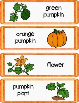 Pumpkin Writing Center Cards