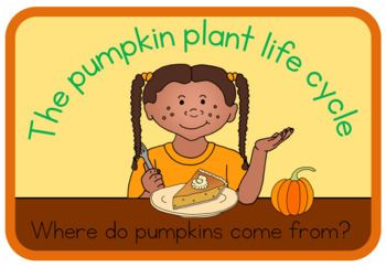 Pumpkin life cycle book (simplified version)