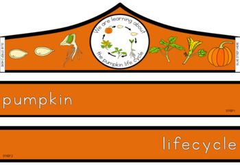 Pumpkin life cycle crown